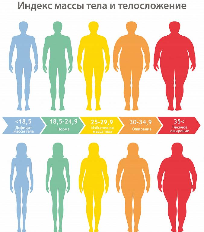 ИМТ определение избыточного веса и стадии ожирения
